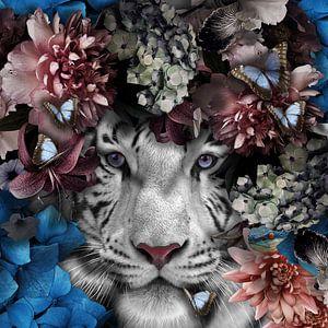 Tiger von Maaike Wycisk