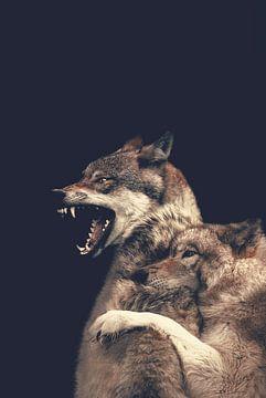 Wolf: Schutzwolf von Hendrik Jonkman