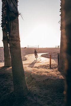 Santa Monica van