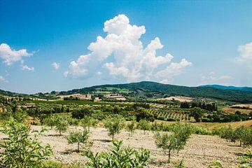 Zomer in Italïe van Quinten Van Ooijen