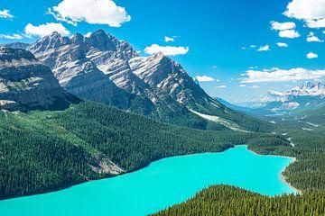 strahlendes Türkises Wasser an einem herrlichen sonnigem und Sommerlichen Tag am Peyto Lake im Banff von Leo Schindzielorz