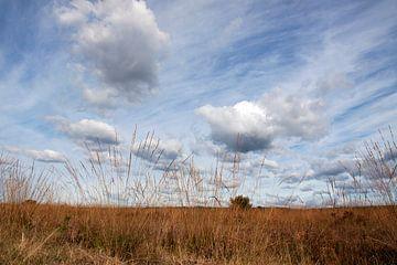 wolkenweg boven de Veluwe  van Nienke Stegeman