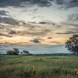 soirée dans le parc national kruger en afrique du sud sur ChrisWillemsen