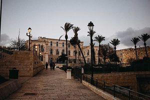 Bij de toegangspoorten naar de Oude Stad Jeruzalem van Lauri Miriam van Bodegraven