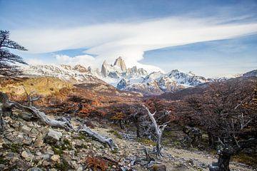 Berg Monte Fitz Roy in een herfstlandschap in Patagonië van Armin Palavra