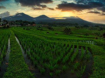 Vulkane auf Bali (Indonesien) von Ardi Mulder