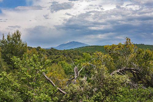 De Mont Ventoux in de Provence