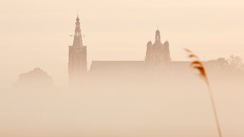 Den Bosch ontwaakt vanuit de mist van Jasper van de Gein Photography