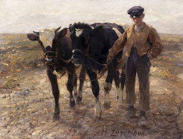 Hirte mit Jungrindern auf der Heide, HEINRICH VON ZÜGEL, 1904 von Atelier Liesjes