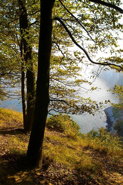 Herbst an der Kreideküste von Ostsee Bilder