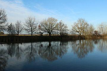 Reflexionen am Kolham von Pim van der Horst