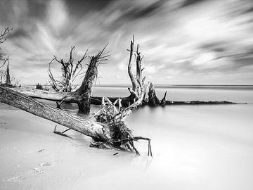 Ostsee von Sascha Kilmer