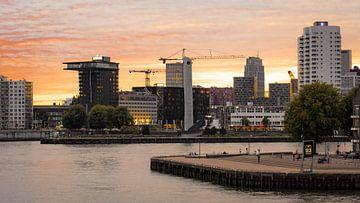 Rotterdam aan de Maas van Michael Fousert