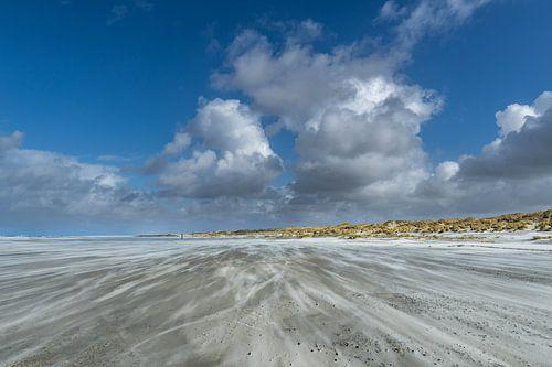Een mooie dag op het strand met veel wind