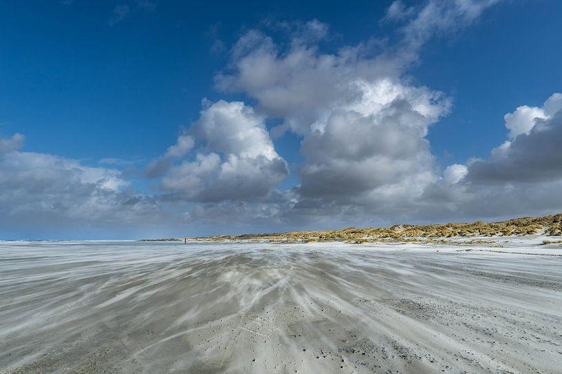 Een mooie dag op het strand met veel wind van Marjolein van Roosmalen