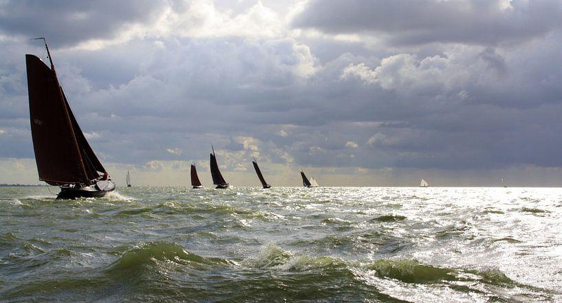 Ruig IJsselmeer voor Lemsteraken van Hielke Roelevink