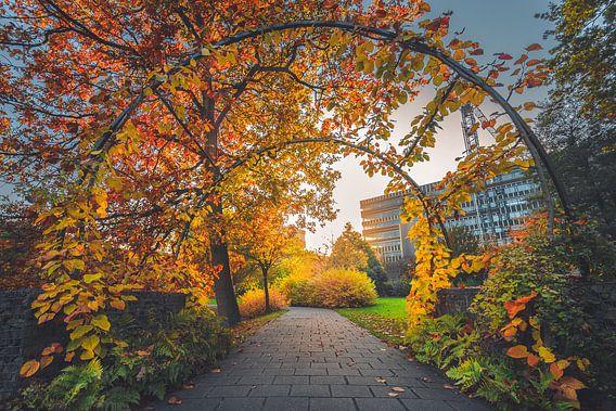 Utrecht botanical gardens van Alessia Peviani