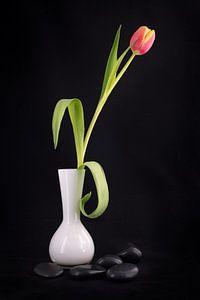 Tulpe in einer weißen Vase mit schwarzen Kieselsteinen