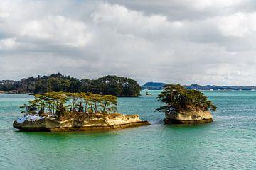 Inselchen in der Bucht von Matsushima von Mickéle Godderis