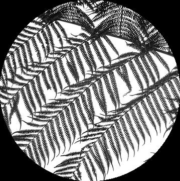 Varen, zwart wit van Rietje Bulthuis