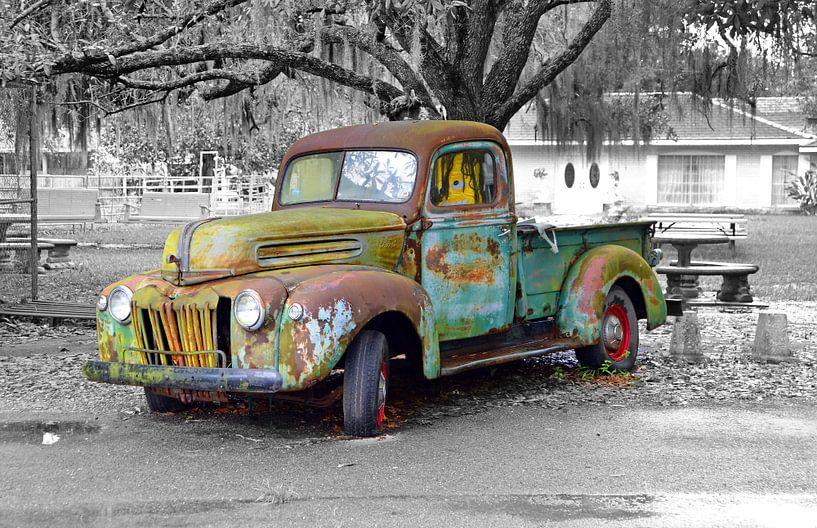 Ford PickUp Truck van Willem van Holten