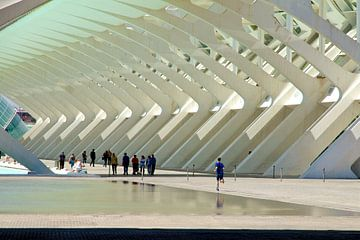 Het ritme van Calatrava van Rick Crauwels