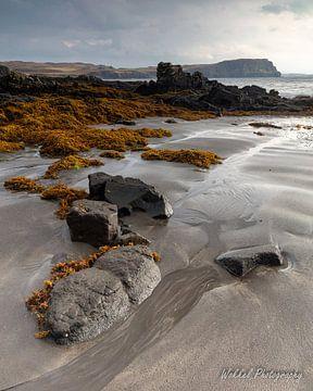 Lijnen in het zand van