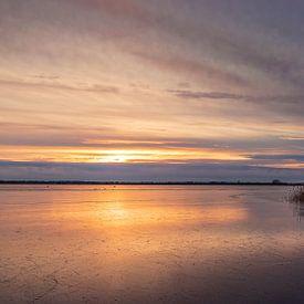 Winters Zuidlaardermeer van Marga Vroom