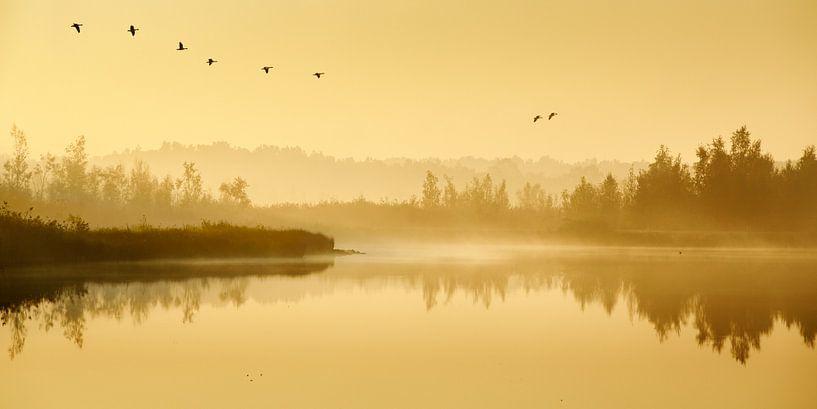 Een sfeervolle ochtend in de Groote Peel van Nando Harmsen