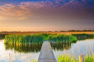 Natuurgebied de Groene Jonker