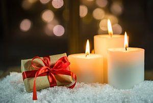 Décoration des fêtes de Noël sur Alex Winter