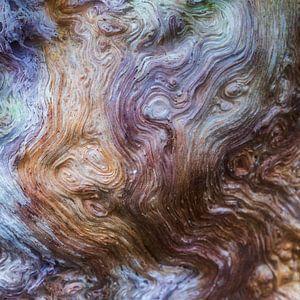 Bomen kijken je aan van Karla Leeftink