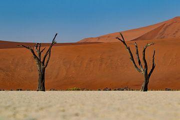 Deadvlei, Namibië van Menso van Westrhenen