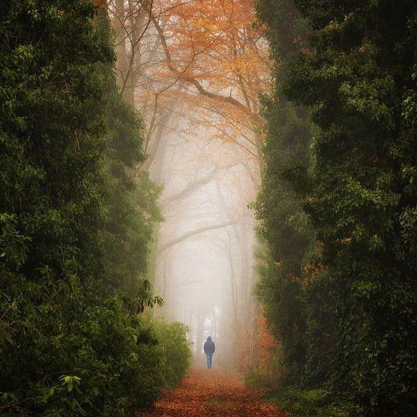 Walk of Life van Martin Podt