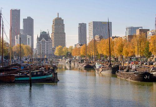 Rotterdam in de herfst van