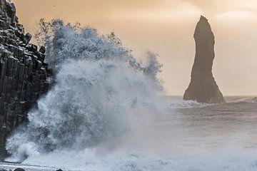 Golven slaan op de kust van Gerry van Roosmalen