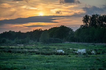 Zonsondergang in Oirschot van Jacky Keeris
