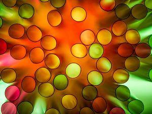 Color Explosie van Chris Clinckx