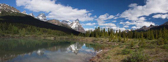 Blik op de Rocky mountains, Panorama van Marco van der Veldt