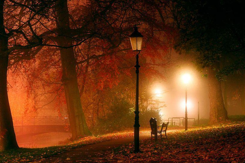 Frisse herfst van Tvurk Photography