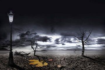 klimaatsverandering van