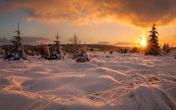 Sneeuwlandschap van Bob Luijks