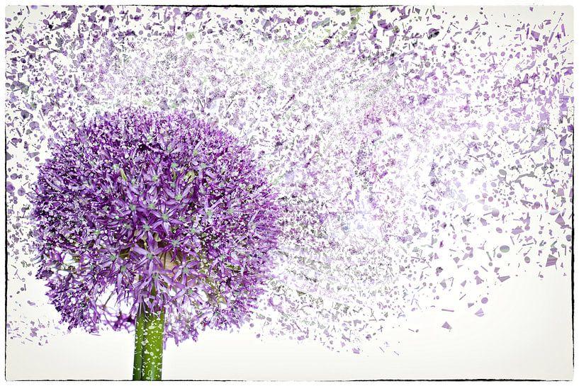 Flower Power van Cristel Brouwer