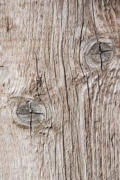 Holz von Anouschka Hendriks