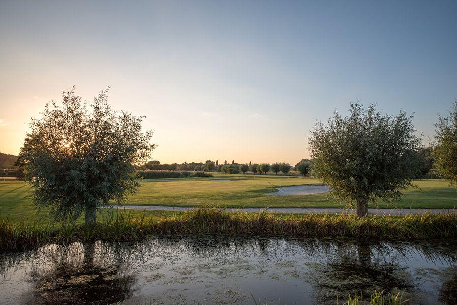 Golfbaan tijdens avondlicht