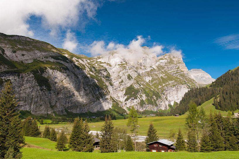 Switzerland mountains - 2 van Damien Franscoise