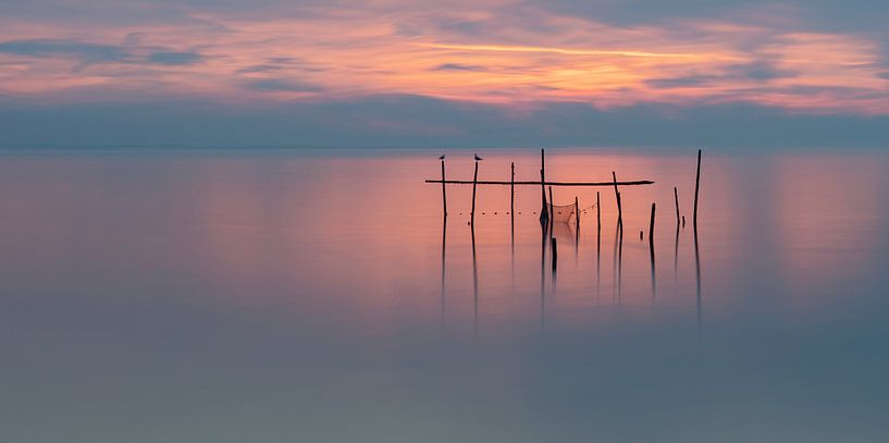 tranquility van Aline van Weert