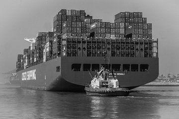 Containerschiff im Hafen von Rotterdam von Susan van der Riet