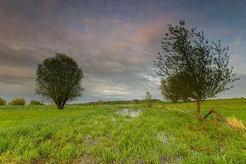 Polderlandschap van Jan Koppelaar