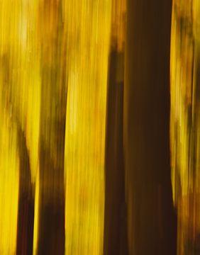 Herfst abstract van Nienke Bot
